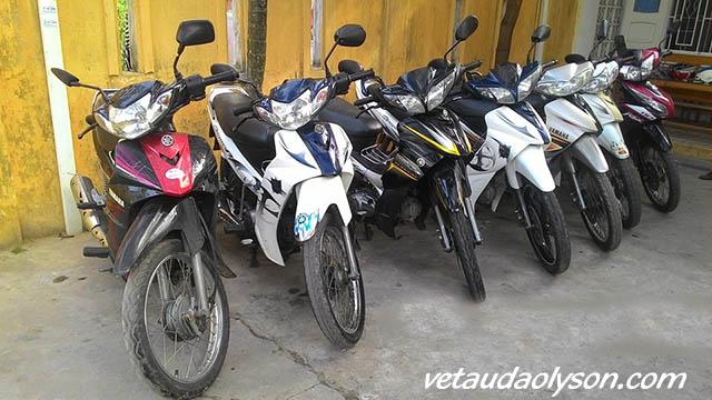 Thuê xe máy tại Lý Sơn