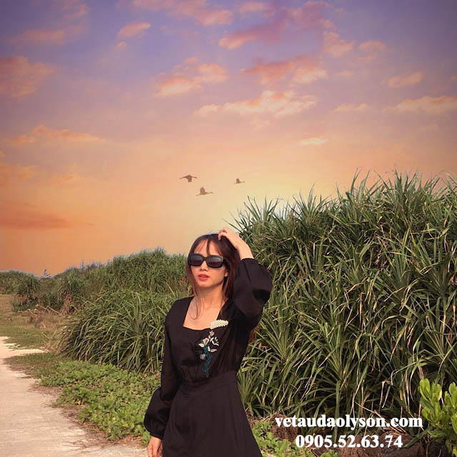 Khung cảnh ở Đảo Bé Lý Sơn