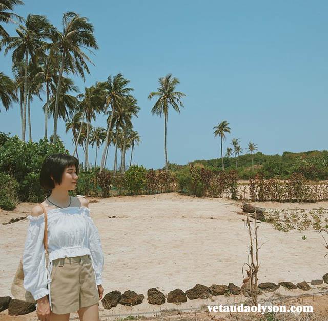 Anh muốn được cùng em, về vùng biển vắng. Mình sẽ sống những ngày hè ươm nắng. Dưới bóng dừa lả lơi, sẽ nói yêu em mãi