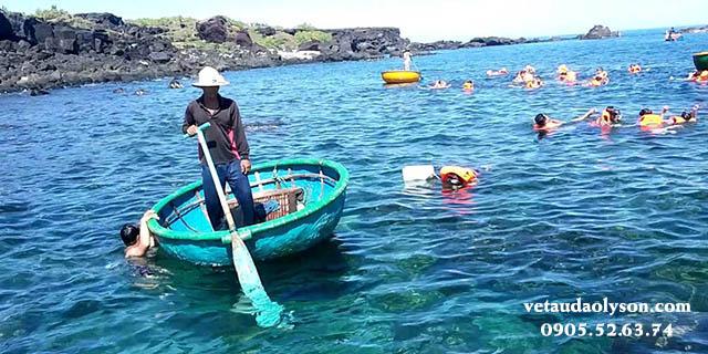 Lặn ngắm san hô Đảo Bé