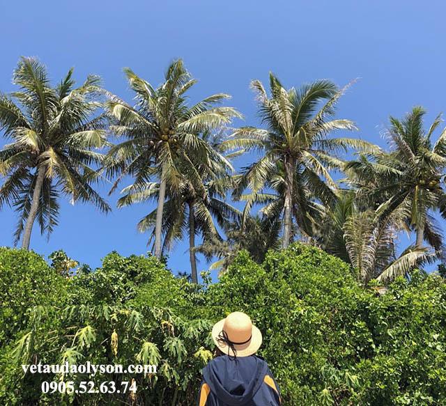 Sinh vật trên Đảo Bé lạ lẫm với nhiều du khách